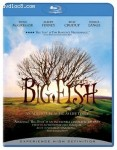 Cover Image for 'Big Fish'