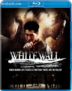 Cover Image for 'White Wall'