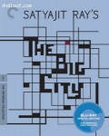 Cover Image for 'Big City, The (Criterion Collection)'