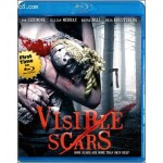 Cover Image for 'Visible Scars'