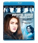 Cover Image for 'White Bird in a Blizzard'